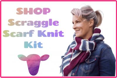 beginner knit kit