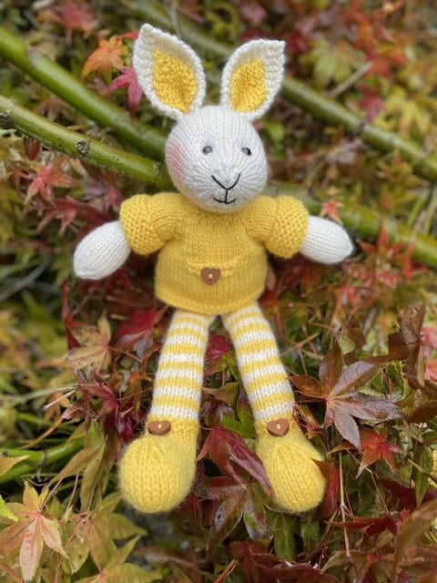 Collywabbit Knit Kit